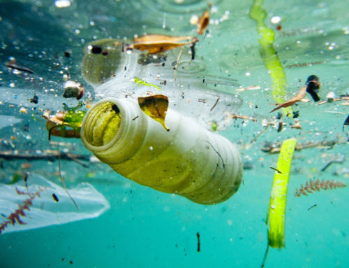 Microplastic is everywhere: 83 percent of our drinking water is contaminated